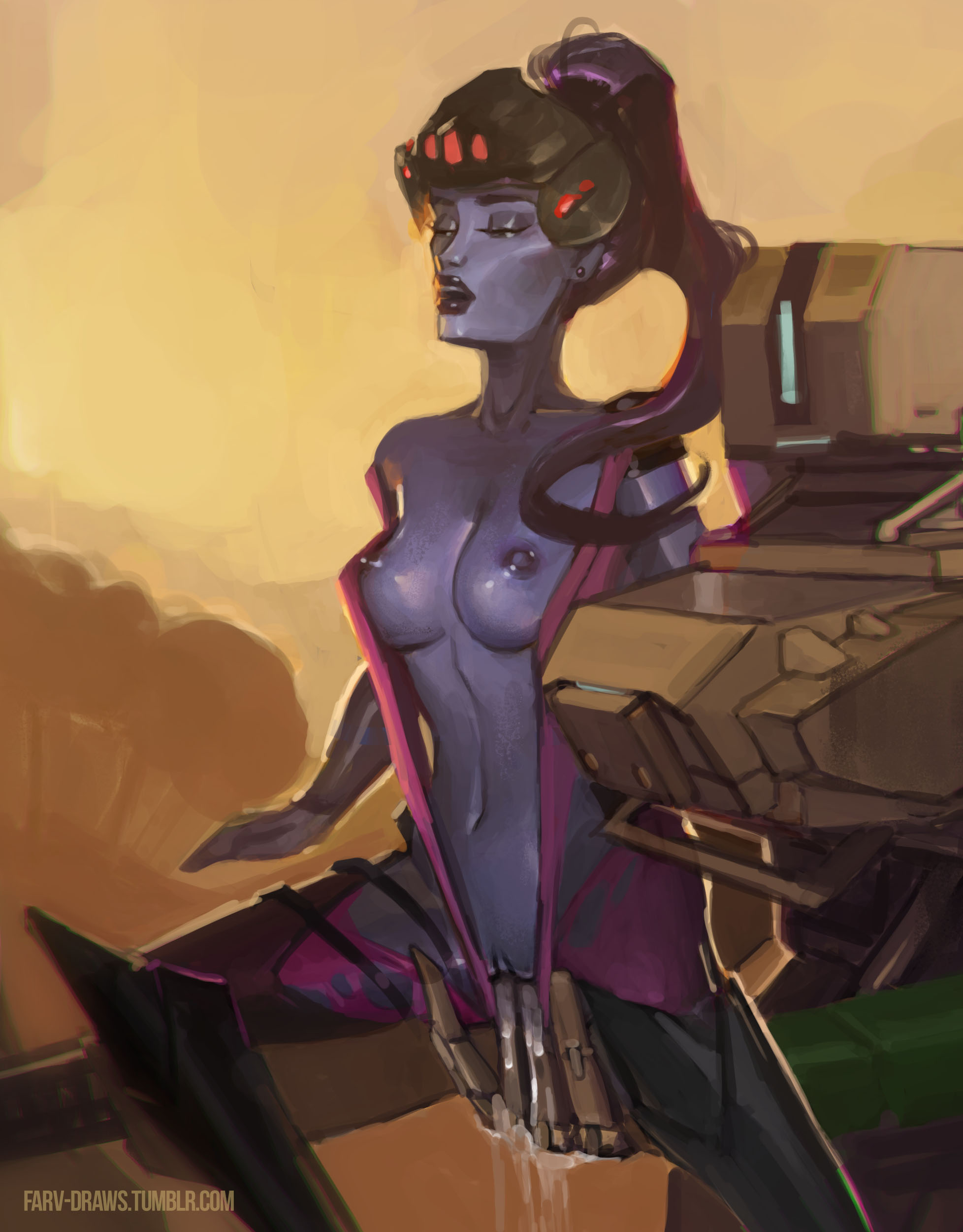 2080777 - Bastion Overlook Widowmaker farv