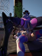 D.Va and Widowmaker